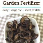 How to Make an Easy, Shelf Stable Homemade Fertilizer from Banana Peels - Stone Family Farmstead