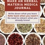 various bowls of dried herbs - How to Make Your Own Materia Medica Journal - Stone Family Farmstead