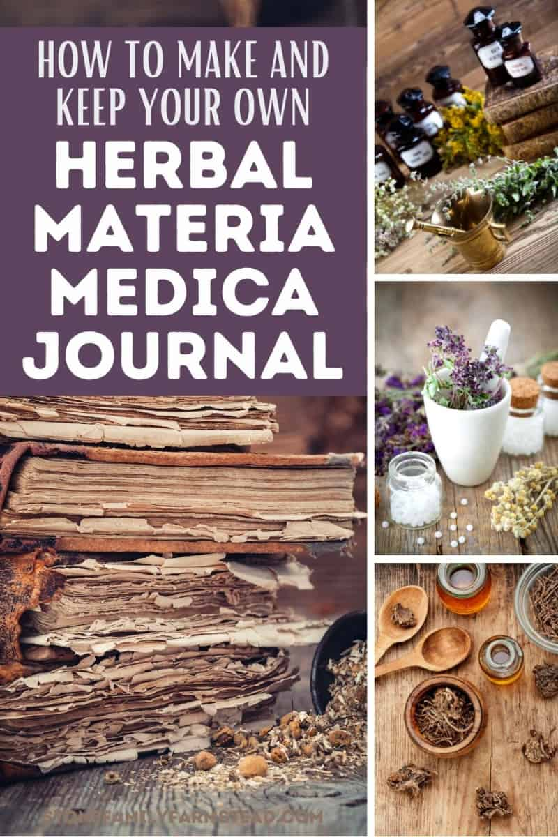 various photos of dried herbs - How to Make Your Own Materia Medica Journal - Stone Family Farmstead