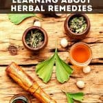 various herbs and apothecary tools - ow to Make Your Own Materia Medica Journal - Stone Family Farmstead