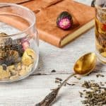 herbs and a notebook - How to Make a Materia Medica - Stone Family Farmstead