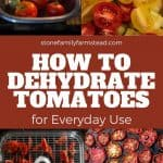 How to Dehydrate Tomatoes - Stone Family Farmstead