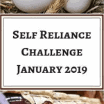Self-Reliance Challenge for January 2019 - Stone Family Farmstead