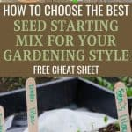 Choosing the Right Seed Starting Mix - Stone Family Farmstead