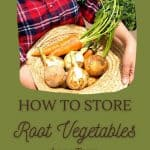 freshly picked root vegetables - Easy Root Vegetable Storage Ideas That Need No Root Cellar - Stone Family Farmstead