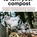 How to Use Chickens as Natural Compost Turners - Stone Family Farmstead
