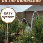 How to Become More Organized on the Homestead - Stone Family Farmstead.com