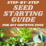 Super Easy Guide to Seed Starting by Kristi Stone