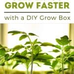 How to Make a Cheap and Effective Grow Light Box - Stone Family Farmstead