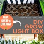 How to Make a Cheap and Effective DIY Grow Light Box