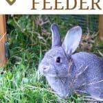 How to Make a DIY Rabbit Feeder - Stone Family Farmstead