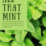 How to Process a Fresh Mint Harvest - Stone Family Farmstead