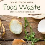 How to Eliminate Food Waste When You Harvest - Stone Family Farmstead