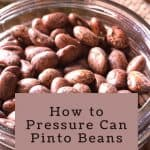 How to Can Pinto Beans {and other dried beans} - Stone Family Farmstead