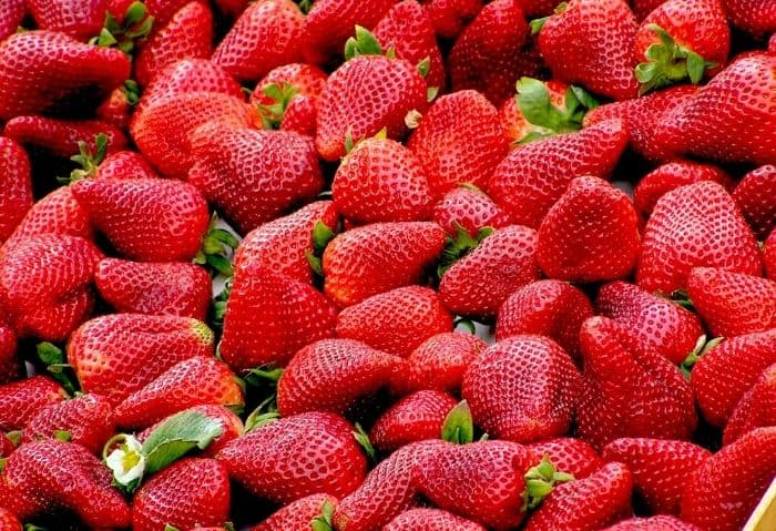 fresh strawberries - How to Make Strawberry Sauce {Using the Tops!} - Stone Family Farmstead