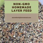 How to Make Chicken Feed for Layers - Stone Family Farmstead