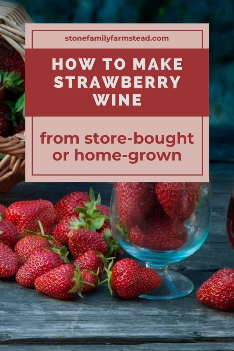 fresh strawberries - How to Make Strawberry Wine - Stone Family Farmstead