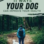 11 Fantastic Health Benefits of Owning a Dog - Stone Family Farmstead