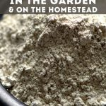 bowl of DE - How to Use Diatomaceous Earth in the Garden - Stone Family Farmstead