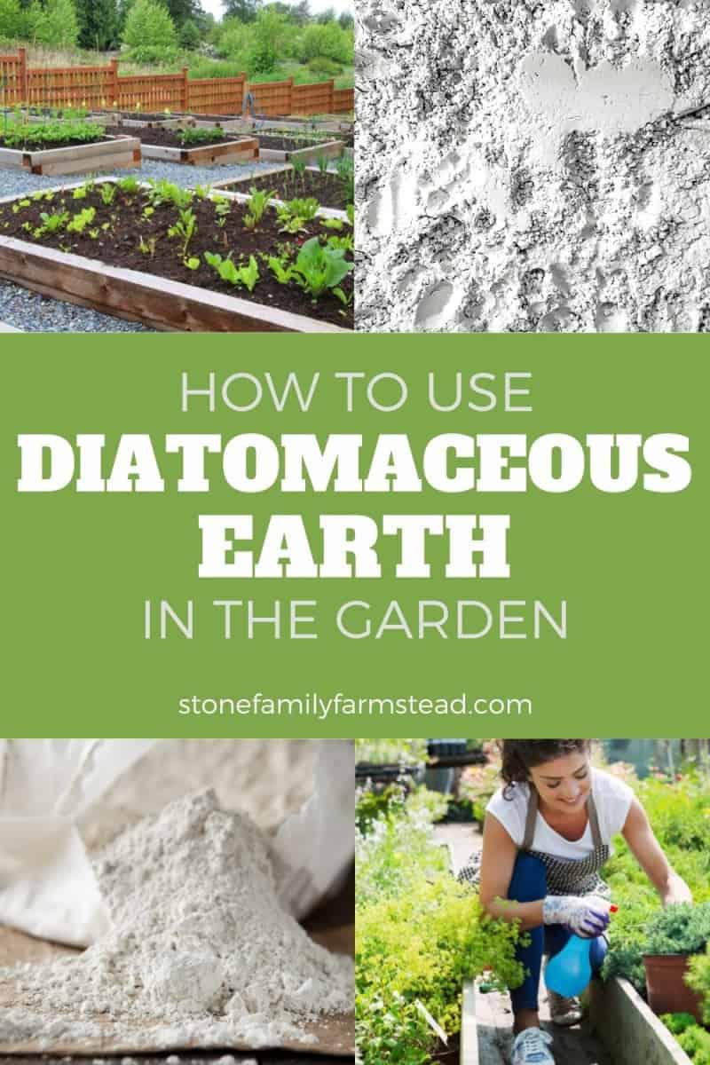 various photos of garden and DE powder - How to Use Diatomaceous Earth in the Garden - Stone Family Farmstead