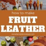 various photos of fruit leather - How to Make Fruit Leather from Any Fruit - Stone Family Farmstead