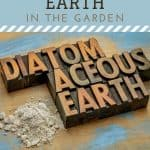 DE pile - How to Use Diatomaceous Earth in the Garden - Stone Family Farmstead